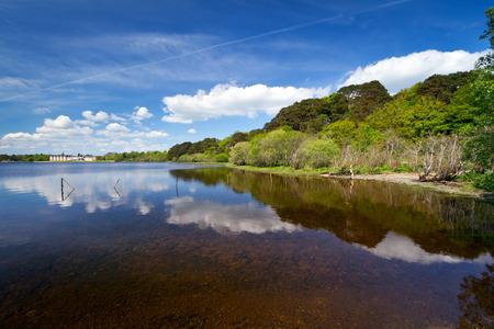 riverside county: Idyllic scenery of Killarney lake in Ireland