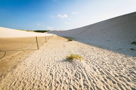 shifting: Shifting dunes near Baltic Sea in Leba, Poland