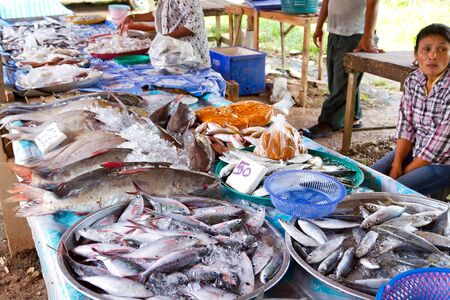 fish selling: Woman selling fish on the local market in Khao Lak, Thailand