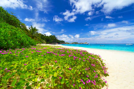 beach panorama: Paradise lagoon of Similan islands, Thailand