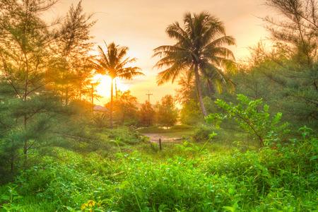 koh kho khao: Amazing sunrise in the jungle of Koh Kho Khao, Thailand