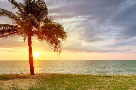 koh kho khao: Beach scenery with palm tree at sunset, Thailand