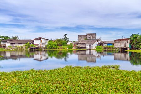 marshy: Marshy village scenery in Bang Muang, Thailand