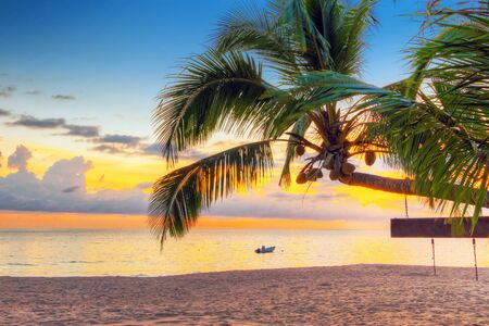 koh kho khao: Tropical coconut palm tree at sunset in Thailand Stock Photo
