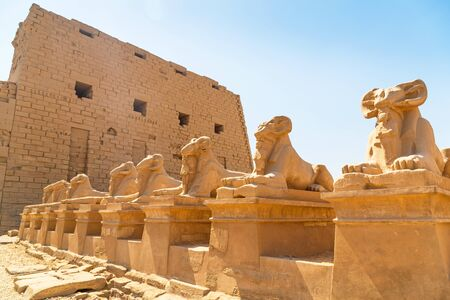 thebes: Ancient statues of Ram-headed sphinxes in Karnak temple, Luxor