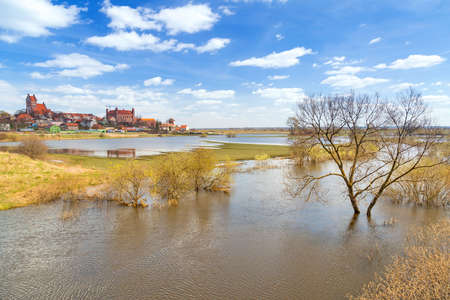 teutonic: Gniew town with teutonic castle at Wierzyca river, Poland