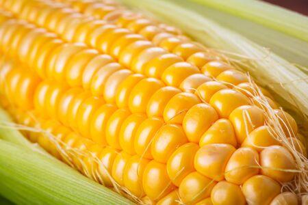 corncob: Macro shot of fresh corncob