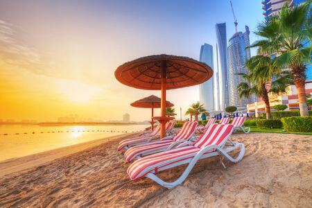 summer trees: Sunrise on the beach at Persian Gulf in Abu Dhabi Stock Photo