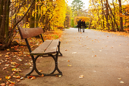 empty bench: Empty bench in the autumnal park, Poland Stock Photo