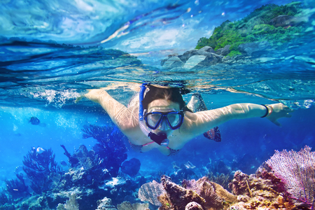 dive trip: Woman snorkeling in the tropical water