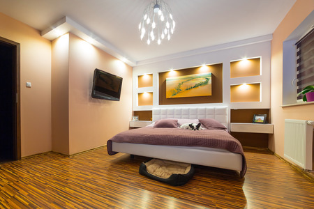 Modern master bedroom interior with dog on bed