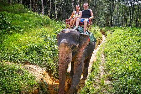 koh kho khao: Elephant trekking in Khao Sok National Park,Thailand Stock Photo