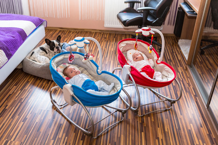 woman hanging toy: Baby twins lying down in cradles with dog watching them