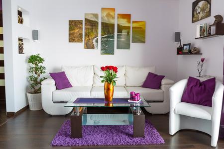 Modern living room interior Archivio Fotografico