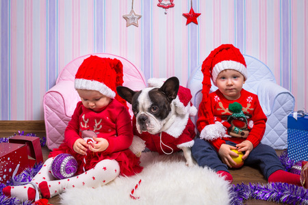 Boy and girl twins and french bulldog posing with Christmas presents