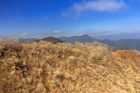 Active sulphur vents of Owakudani at Fuji volcano, Japan