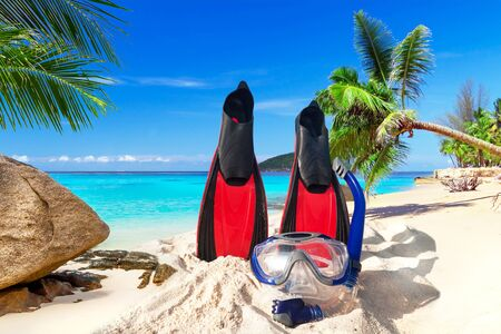 flippers: Snorkeling mask and fins on the tropical beach