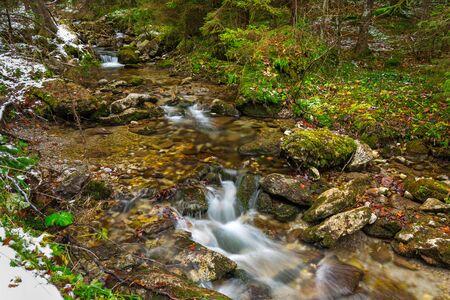 Mountain creek in Tatra mountains, Poland