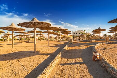 Parasols on the beach of Red Sea in Hurghada, Egypt Editorial