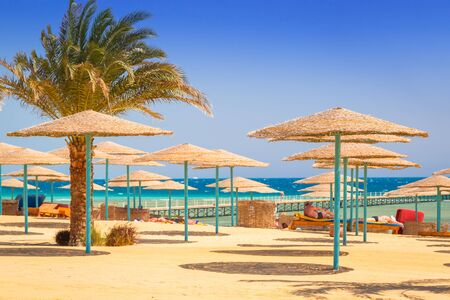 HURGHADA, EGYPT - APR 12, 2013: Tropical resort Three Corners Sunny Beach in Hurghada. Three Corners is Belgian company with 11 hotels at Red Sea in Egypt and one in Budapest, Hungary. Editorial