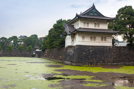 Walls of the Imperial Palace in the Kokyogaien Park of Tokyo, Japan