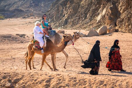 Hurghada, Egypt - April 16, 2013: Camel ride on the desert near Hurghada, Egypt. Camel ride on the desert is one of the main local tourist attraction in Egypt.
