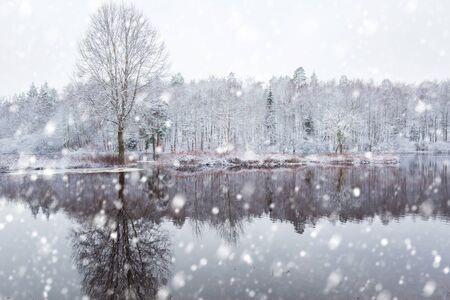 Morrum river in snowy winter scenery, Sweden