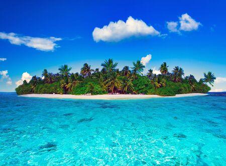 Île tropicale des Maldives sur l'océan Indien