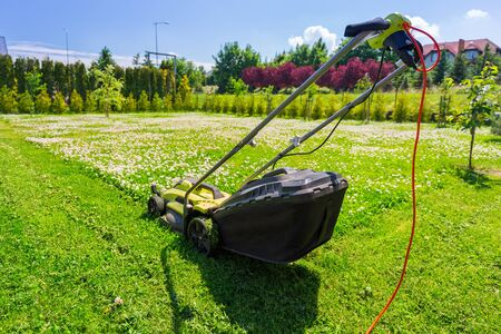 Lawn mower cutting green grass in backyard Archivio Fotografico