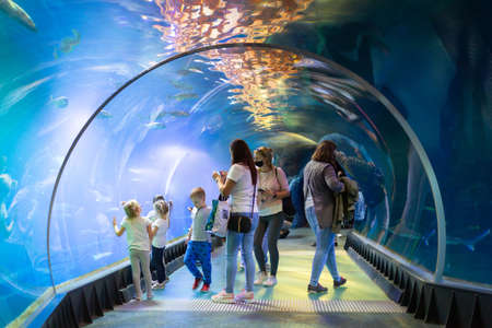 Wroclaw, Poland - September 7, 2020: People visit underwater tunnel with sharks in Wroclaw Africarium.