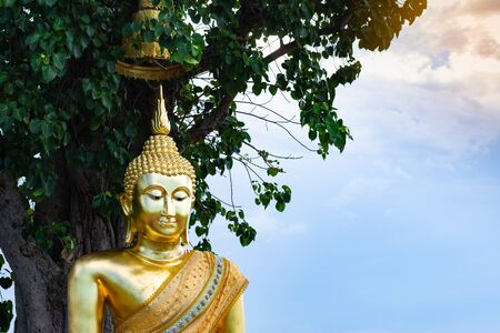 The golden buddha statue under the big tree in public place of Thailand.