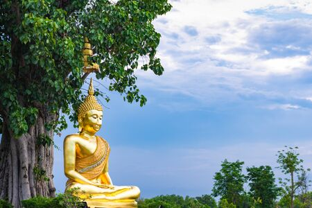 The golden buddha statue under the big tree in public place of Thailand. 스톡 콘텐츠 - 149302328