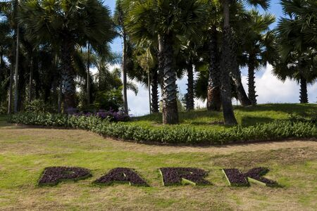 Background photo : palm trees and park wording