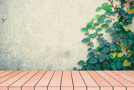 vintage tone of Green Creeper Plant on the Wall with warm brown wooden floor inside and interior photo