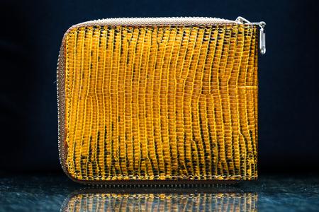bolsa dinero: bolsillo bolsa de dinero de la boa