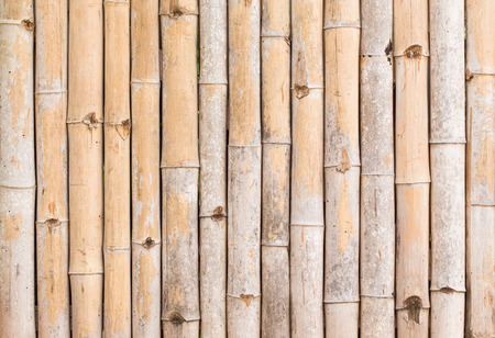 backgroung: bamboo texture pattern backgroung