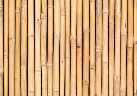 bambu: bambú patrón de textura backgroung