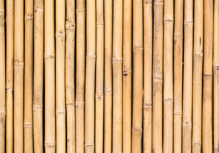 bamboo texture pattern backgroung