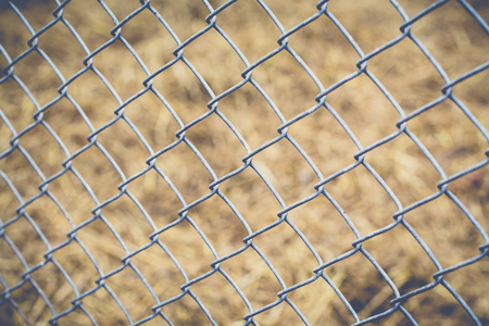 metal wire: Metal wire fence or cage with blur background