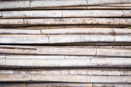 bamboo texture: old Bamboo texture background