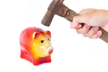 financial assets: Man hand holding a hammer will knock into Pig piggy bank saving. The concept of financial assets, reliability deposits, insurance savings.