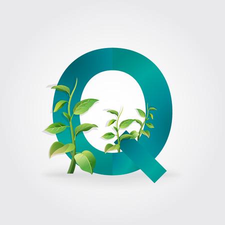 eco energy: Green eco letters logo with leaves. symbol  alphabet  Letter Q  botanical  natural Illustration