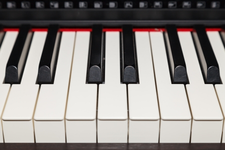 Close up of piano key, front view