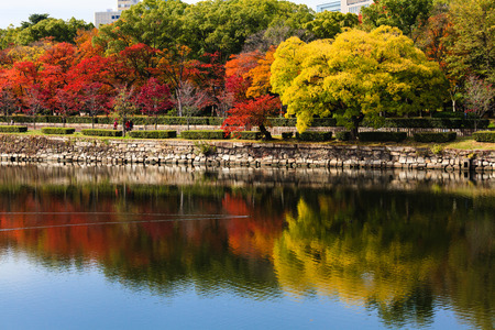 osaka castle: Colorful autumn leaves reflecting on the water in front of the Osaka castle, Japan
