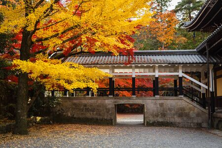 Colorful autumn leaves at Nanzenji temple, Kyoto, Japan