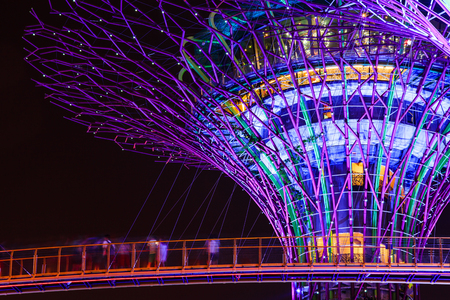 GARDEN BY THE BAY, SINGAPORE - AUGUST 17, 2015: Night view of Supertree Grove at Gardens by the Bay on AUGUST 17, 2015 in Singapore. Editorial