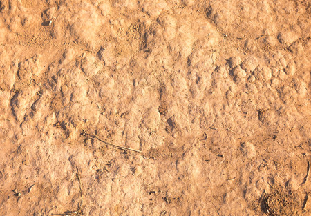 dirtied: soil texture Stock Photo