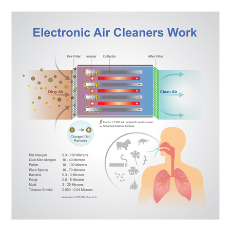 An air purifier is a device which removes contaminants from the air in a room. These devices are commonly marketed as being beneficial to allergy sufferers and asthmatics, and at reducing or eliminating second-hand tobacco smoke. Vector art, Illustration.