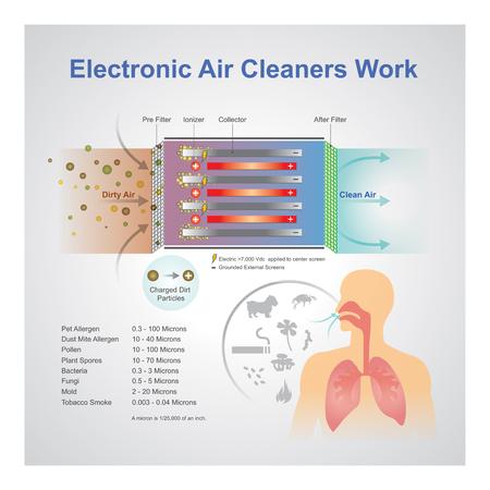 Un purificatore d'aria è un dispositivo che rimuove i contaminanti dall'aria in una stanza. Questi dispositivi sono comunemente commercializzati come benefici per chi soffre di allergie e asmatici e per ridurre o eliminare il fumo di tabacco di seconda mano. Arte vettoriale, illustrazione.
