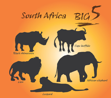 big five: In Africa, the big five game animals are the African lion, African elephant, Cape buffalo, African leopard, and rhinoceros. Vector, Illustration.